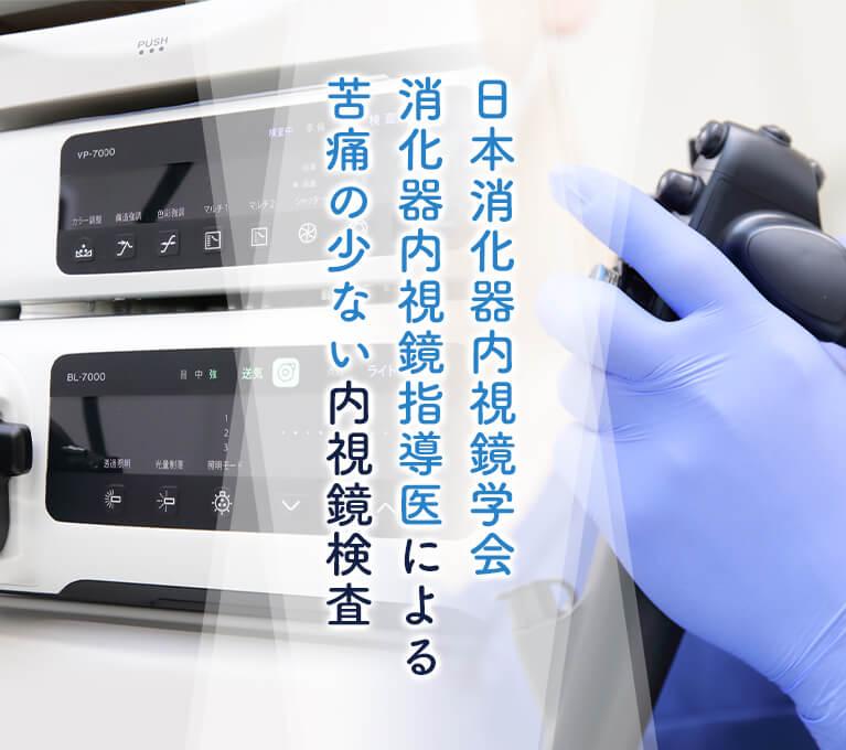 日本消化器内視鏡学会消化器内視鏡指導医による苦痛の少ない内視鏡検査